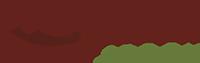 Wooden Spoon Logo